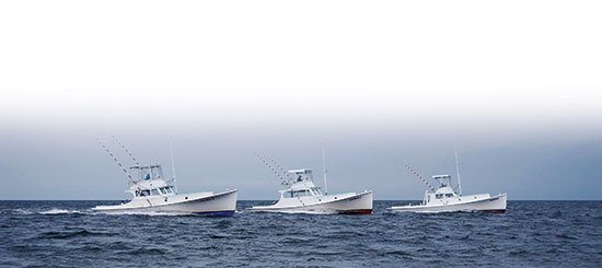Albatross Fleet three boats