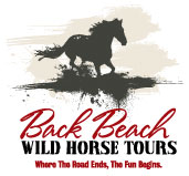 Back Beach Wild Horse Tours logo