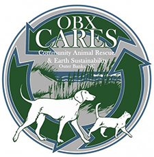 OBX Cares Earth Day Event