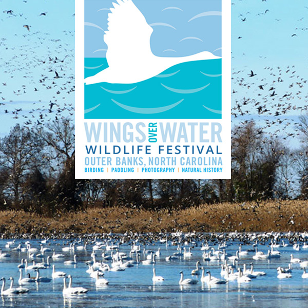 Wings Over Water Festival