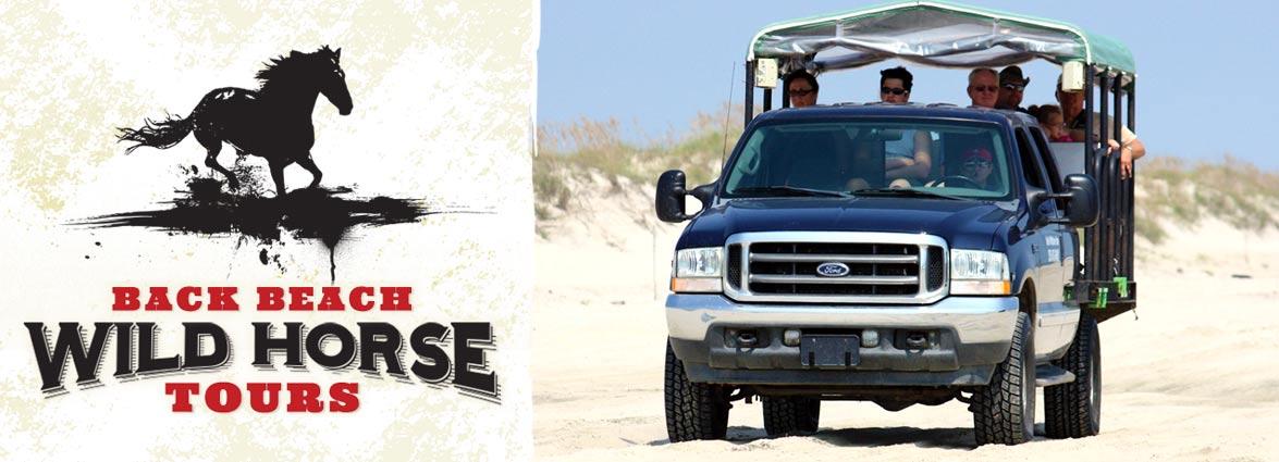 Back Beach Wild Horse Tours Corolla NC