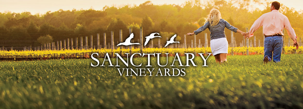 Sanctuary Vineyards