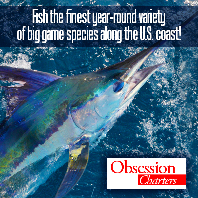 Offshore fishing obsession charters outer banks things for Obsession fishing charters