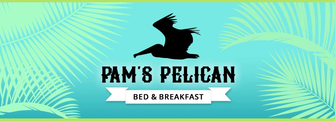 Pam's Pelican Bed And Breakfast
