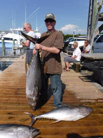Tuna haul june 10 2017 pirate 39 s cove marina outer for Fishing report outer banks