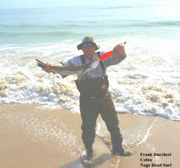 Daily fishing report may 18 2016 tw s bait and tackle for Tws bait and tackle fishing report