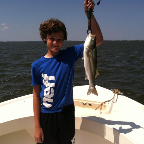 T-Time Charters, More stripers in the sound on Friday