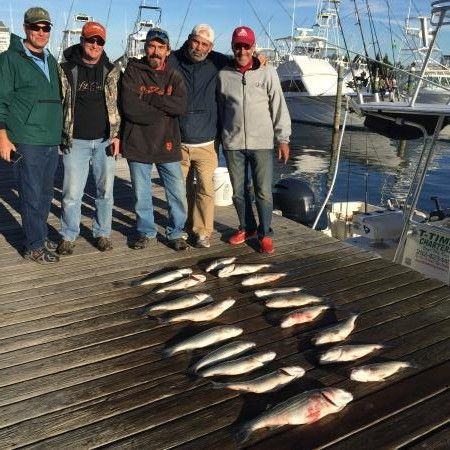 T-Time Charters, stripers from Saturday