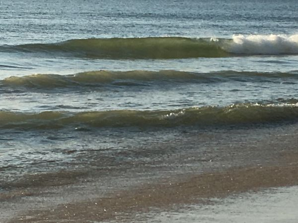 Outer Banks Boarding Company, OBBC Sunday June 16th