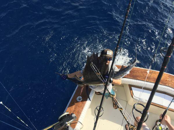 Carolina Girl Sportfishing Charters Outer Banks, Offshore fishing is Hot