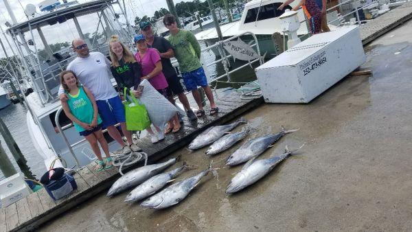 Phideaux Fishing, SUSANS' CROWD