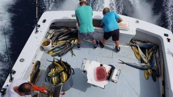 Phideaux Fishing, MAHI