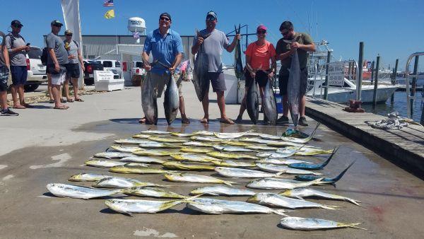 Phideaux Fishing, GREAT JULY FISHING