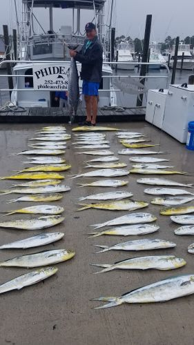 Phideaux Fishing, Blue Marlin, Wahoo and mahi