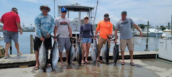 Phideaux Fishing, not many sharks