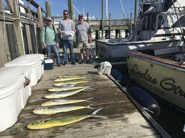 Carolina Girl Sportfishing Charters Outer Banks, Marlin & Mahi