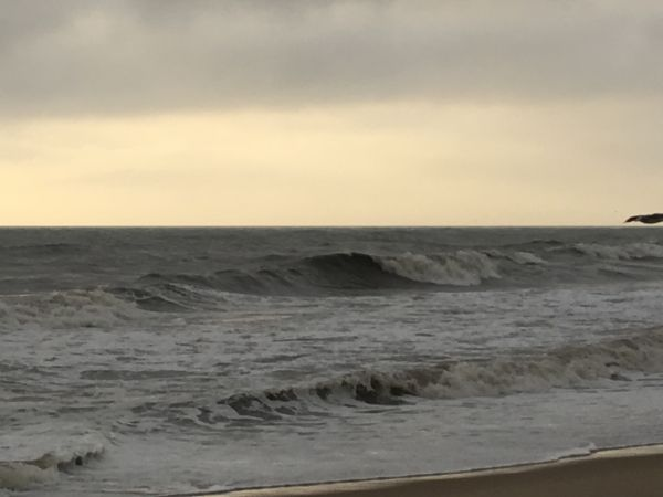 Outer Banks Boarding Company, OBBC Tuesday August 27th
