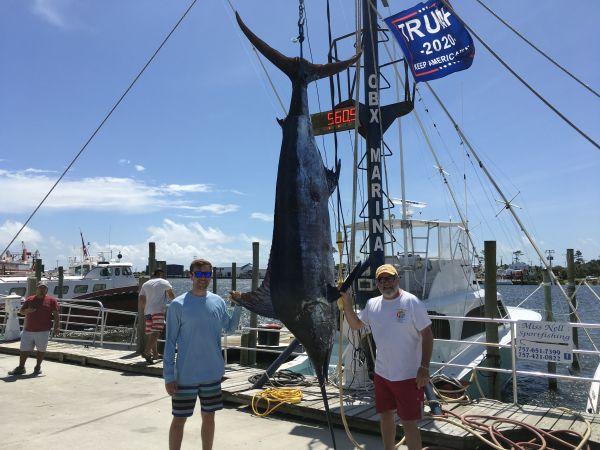 Carolina Girl Sportfishing Charters Outer Banks, Blue Marlin & Citation Tile Fish