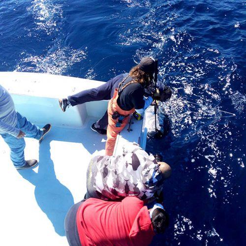 Tuna Duck Sportfishing, 90 Pound Class Bluefin Tuna