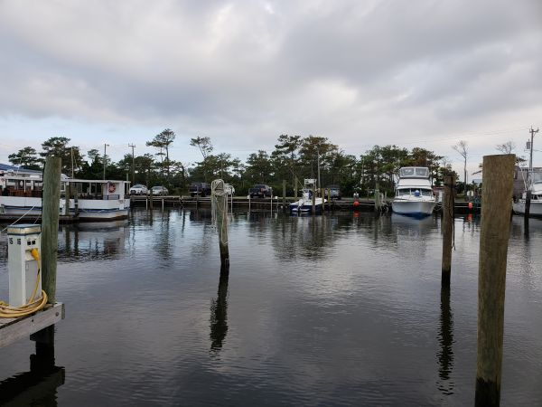 Wanchese Marina, Off The Dock