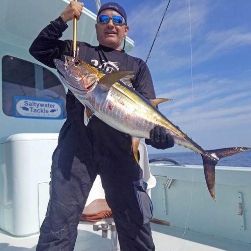 Tuna Duck Sportfishing, Yellowfin Tuna On Topwater