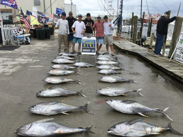 Carolina Girl Sportfishing Charters Outer Banks, Still Great Tuna Fishing ! And we have 2 days left this month