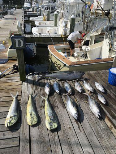 Carolina Girl Sportfishing Charters Outer Banks, Tuna & Mahi