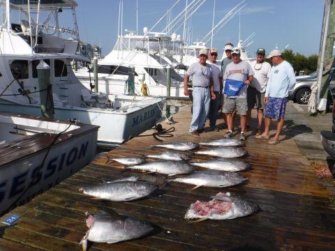Pirate's Cove Marina, Tuna, Tuna, Tuna!