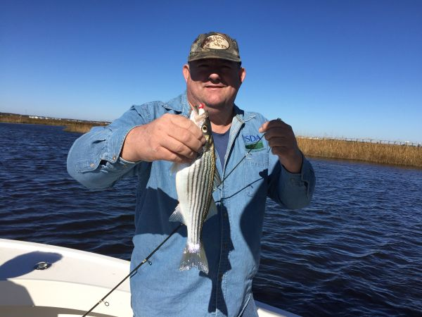 T-Time Charters, Throwback striper