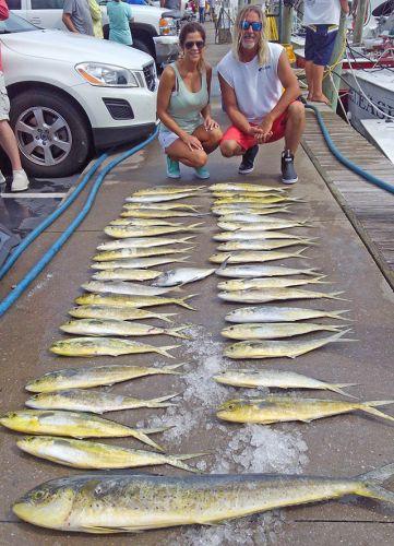 Tuna Duck Sportfishing, Mahi!