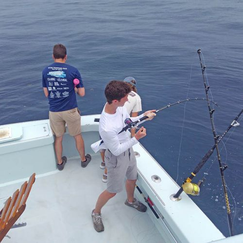 Tuna Duck Sportfishing, Sailfish and Amberjacks