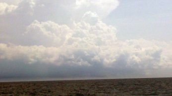 Tuna Duck Sportfishing, Thunderstorms Today