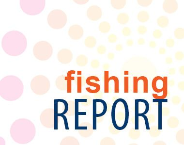 Dillon's Corner, MARCH 5 FISHING REPORT