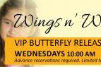 Elizabethan Gardens, VIP Butterfly Release