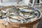 Whalebone Seafood Market Outer Banks, Fresh Local Seafood