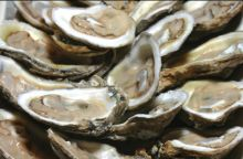 Local oysters will put you in a Valentine's mood.
