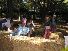 Elizabethan Gardens' super-fun Harvest Hay Day is Saturday