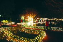 Be sure to see Winter Lights at Elizabethan Gardens on Thurs