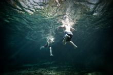 See Chris Hannant's underwater photos at Festival Park.