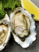 28th Stumpy Point Oyster Feast
