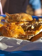 Taste the local catch at the Outer Banks Seafood Festival.