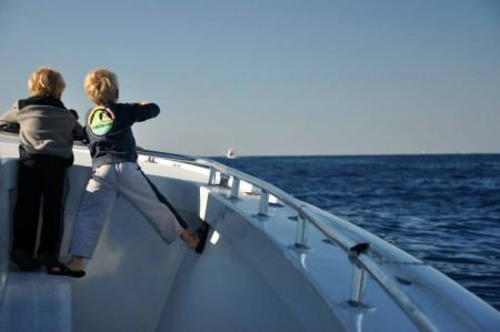 Country Girl Charters, Pelagic Birding