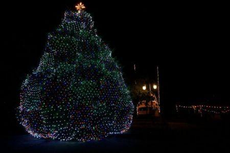 Town of Manteo, Christmas Tree Lighting