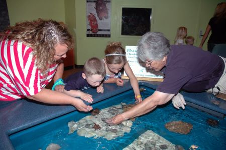 North Carolina Aquarium on Roanoke Island, Quarantine Tour