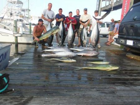 Pirate's Cove Marina, Limits of Dolphin and Bigeye!