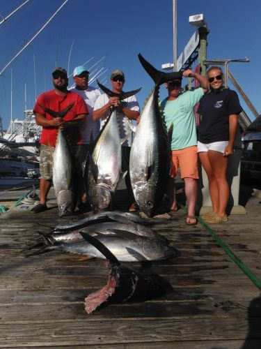 Pirate's Cove Marina, Look At That Tuna!