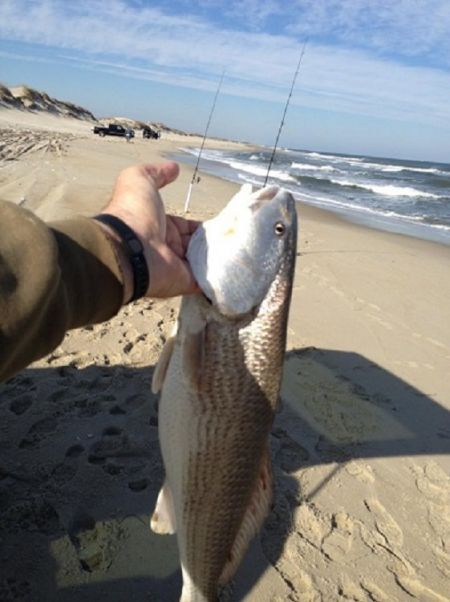 TW's Bait & Tackle, TW's Daily Fishing Report. 2/22/15