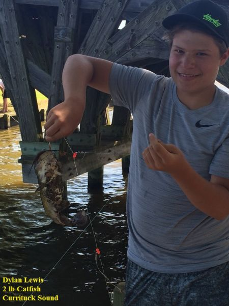TW's Bait & Tackle, TW's Daily Fishing Report. 5/28/15