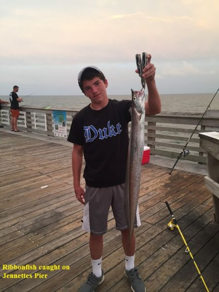 TW's Bait & Tackle, TW's Daily Fishing Report. 8/27/15