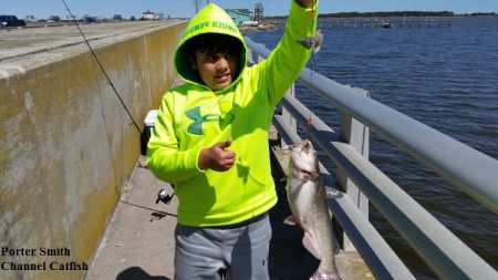 TW's Bait & Tackle, TW's Daily fishing Report. 4/6/15